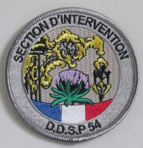 Ecusson de la Police Nationale DDSP 54